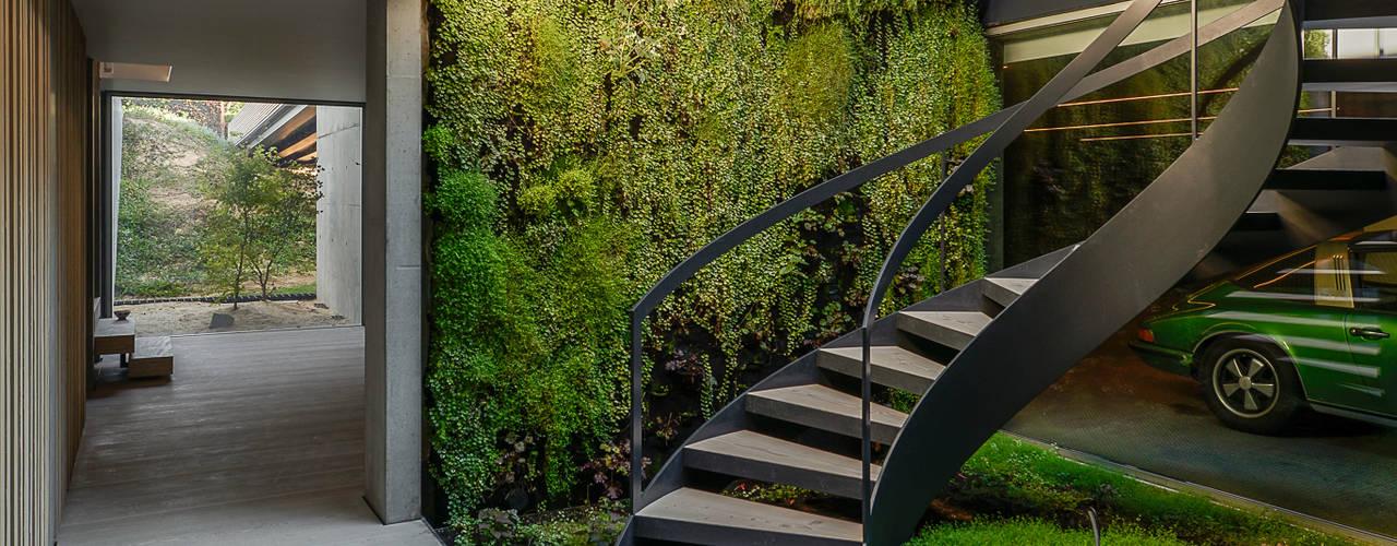 Minimalistische gangen, hallen & trappenhuizen van guedes cruz arquitectos Minimalistisch
