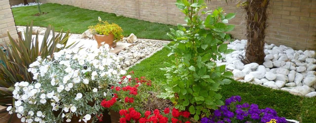 Vườn phong cách hiện đại bởi Studio Botanico Ventrone Dr. Fulvio Hiện đại