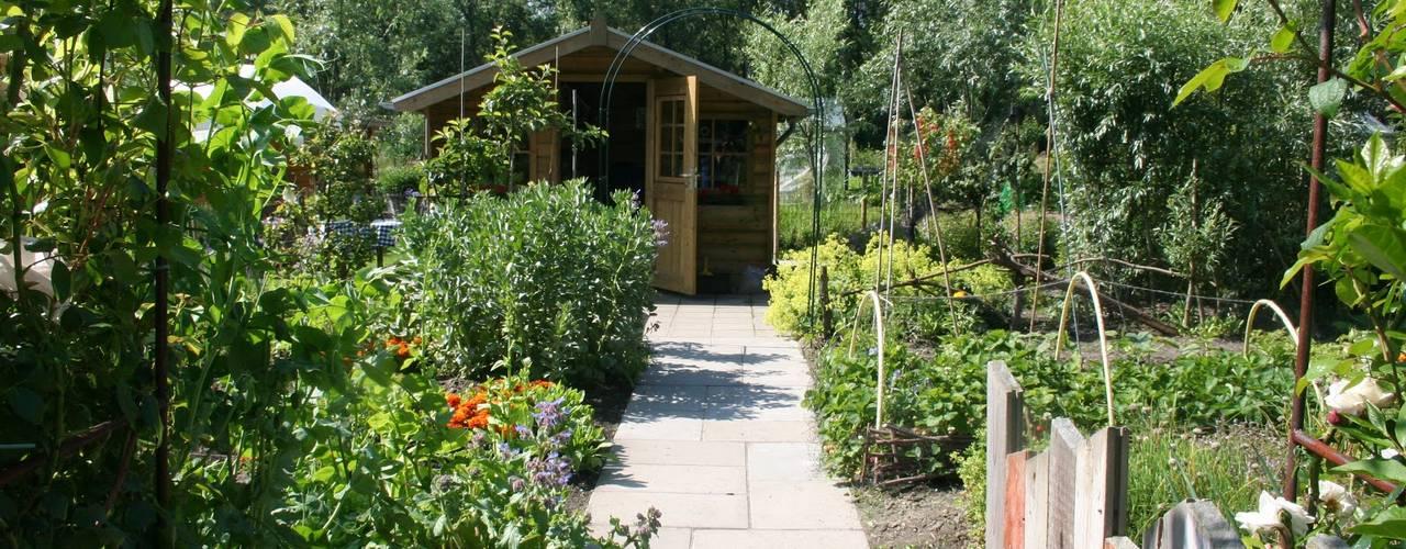 Carla Wilhelm의  정원