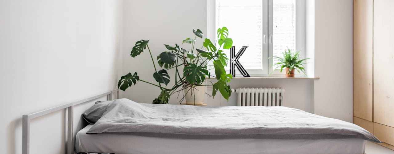Rośliny W Sypialni Które Oczyszczą Powietrze I Zapewnią