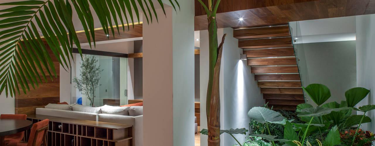 Casa de los 5 Patios Comedores eclécticos de Almazan y Arquitectos Asociados Ecléctico Hormigón