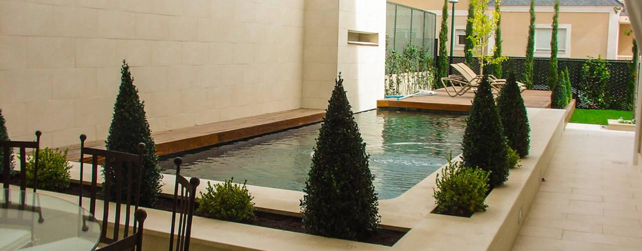Jardines de estilo moderno de avidra Moderno