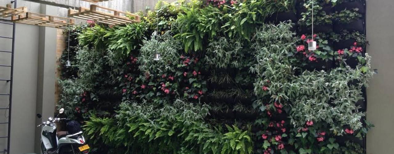Projekty,  Ogród zaprojektowane przez Vertin SAS