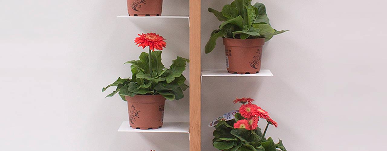 Porta piante da interni Zia Flora di Le zie di Milano Minimalista