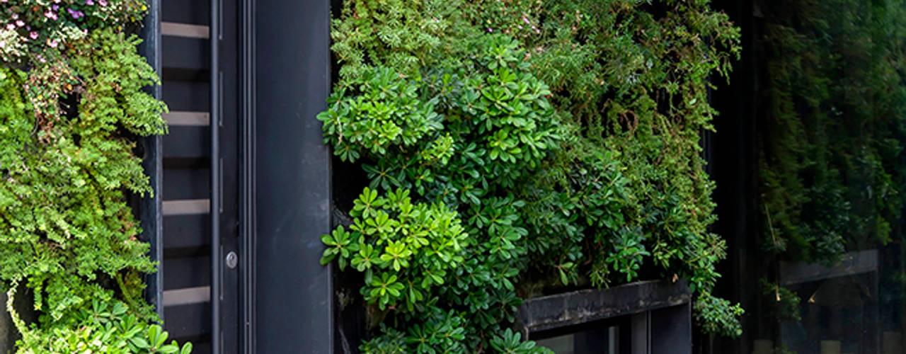 Jardines de estilo  por VERDE360