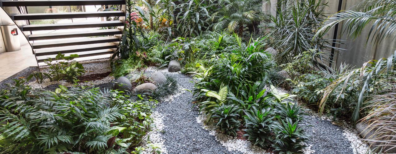 庭院 by PHia