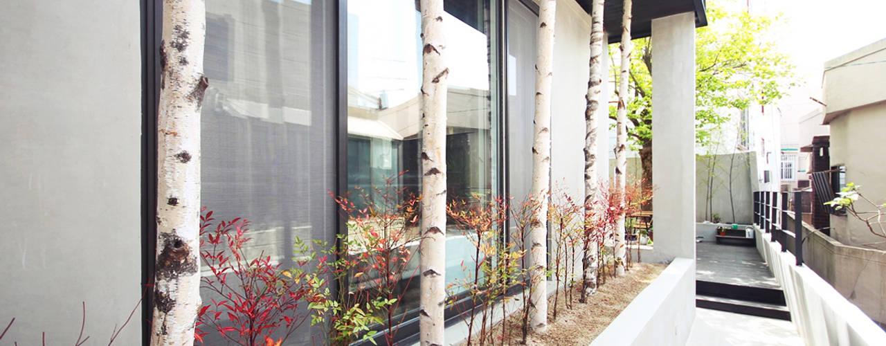 Jardin minimaliste par 로하디자인 Minimaliste