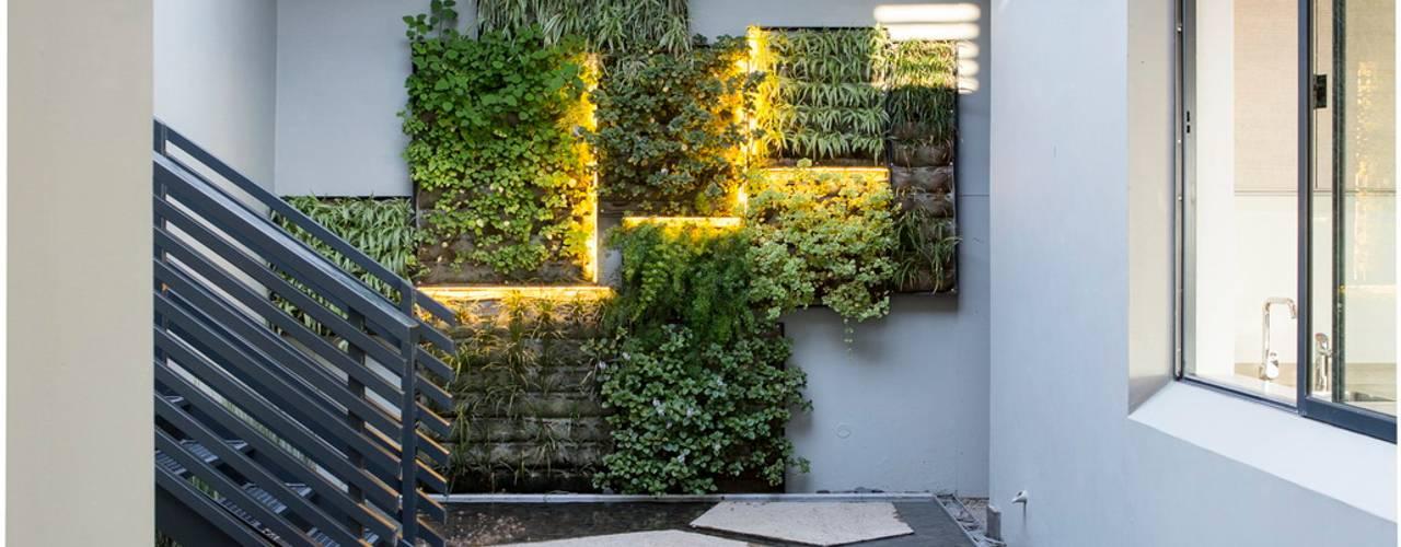 Jardines de estilo  de Nico Van Der Meulen Architects , Moderno