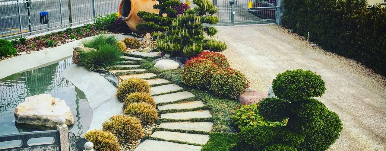 Jardines de estilo  por Azienda agricola Vivai Romeo, Asiático
