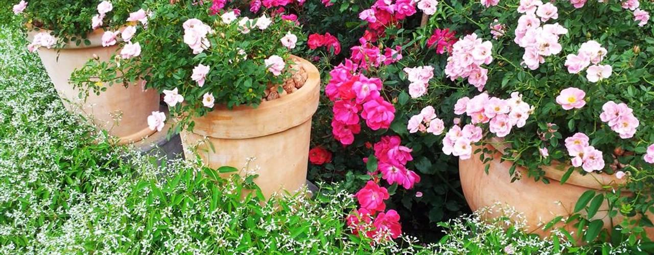 Rietfontein:  Garden by Gorgeous Gardens