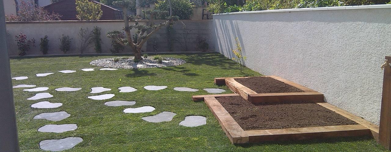 Jardin moderne AEN Paysages Jardin moderne