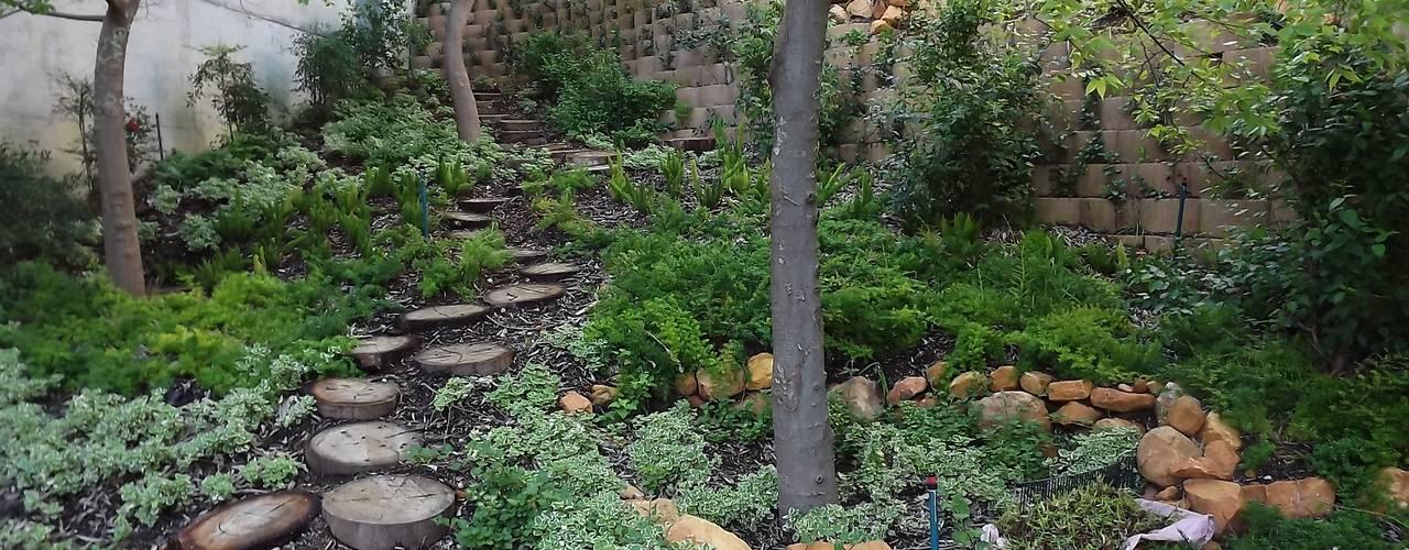 in stile  di Peninsula Landscaping