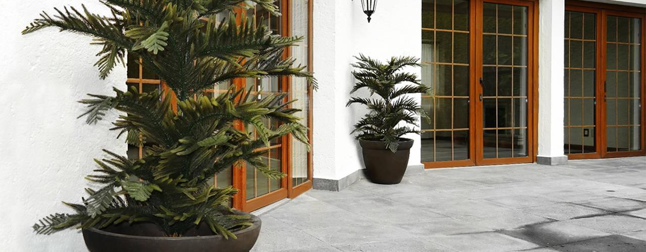 Decoración con plantas en interiores y exteriores :  de estilo  por Ranka Follaje Sintético