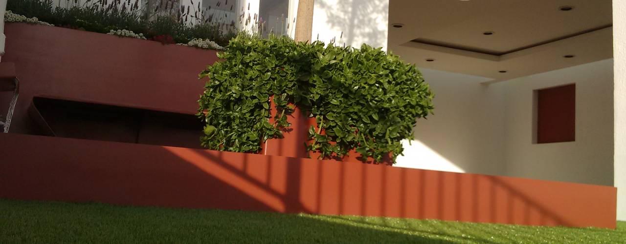 Jardines de estilo moderno de Arqca Moderno