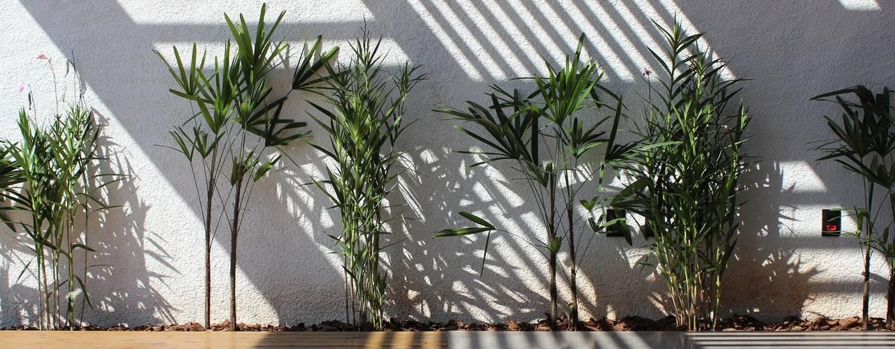 Cornetta Arquitetura Jardines de estilo moderno