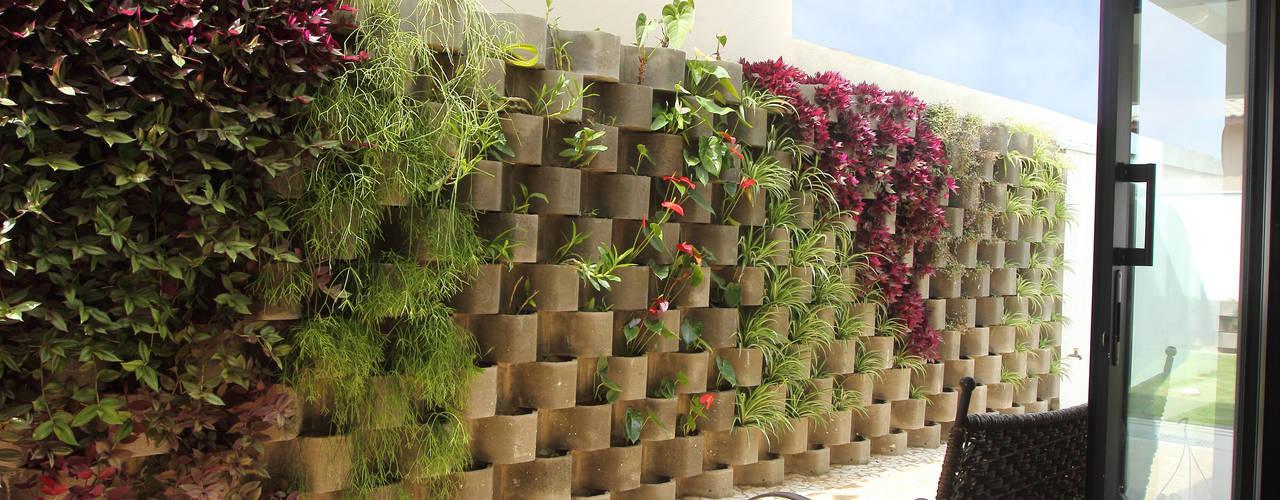 Jardines de estilo  de Taguá Arquitetura