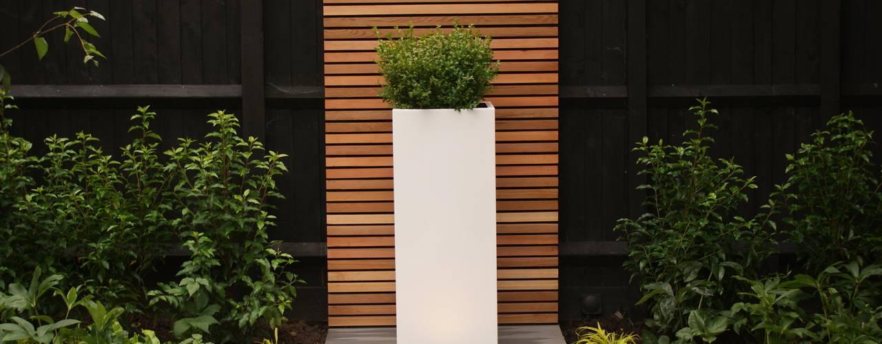 Jardines de estilo  por Hannah Collins Garden Design, Moderno