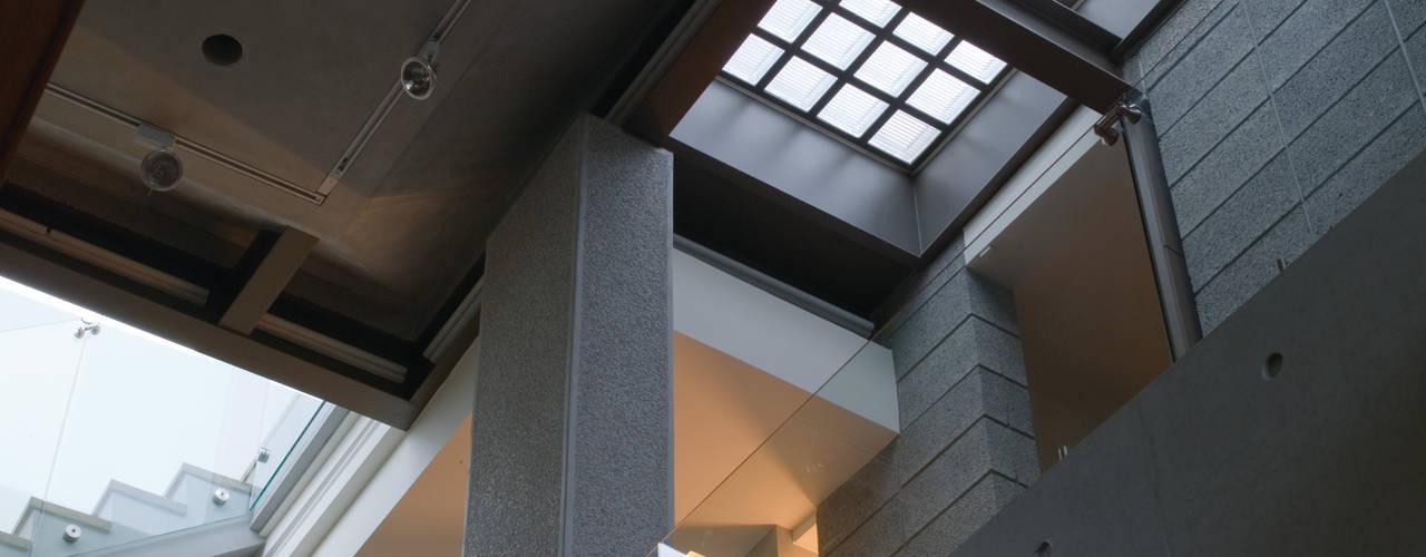 住宅(漫步雲間):  走廊 & 玄關 by 鼎爵室內裝修設計工程有限公司