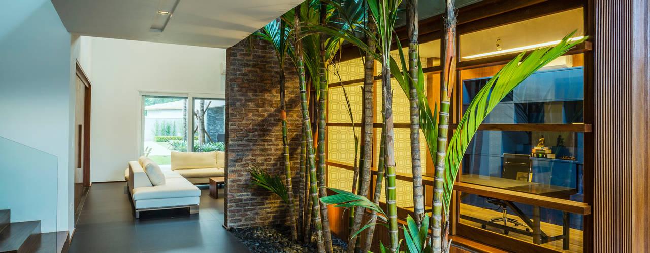 根據 Le Jardin Arquitectura Paisagística 熱帶風