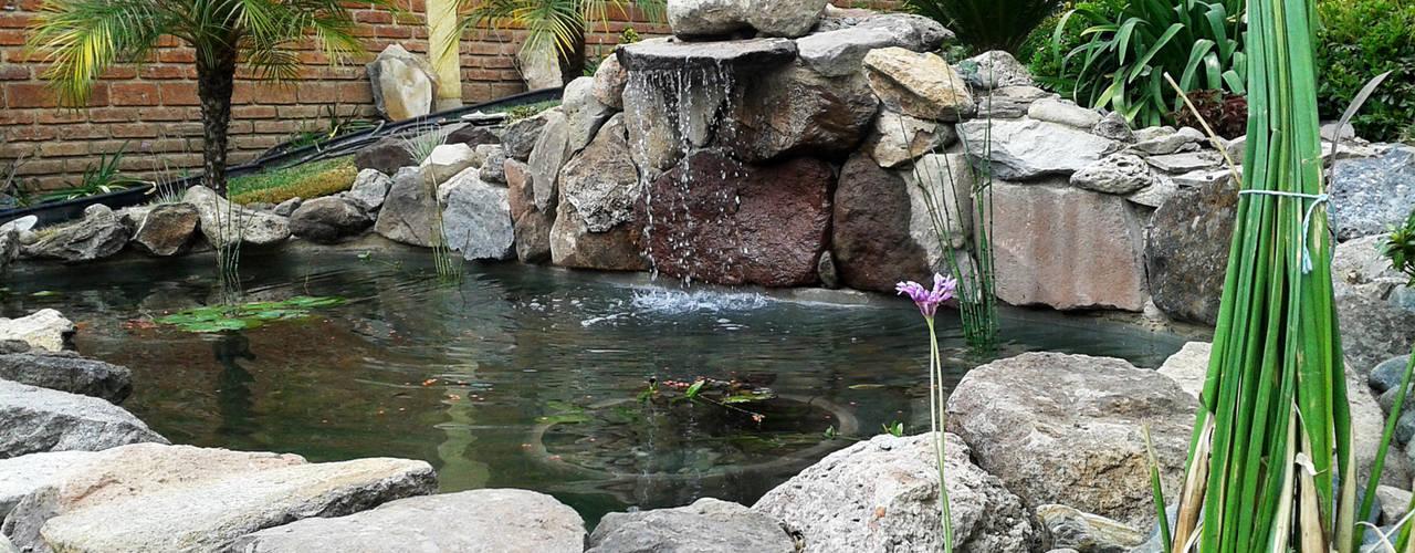 Сады в . Автор – RIVERA ARQUITECTOS