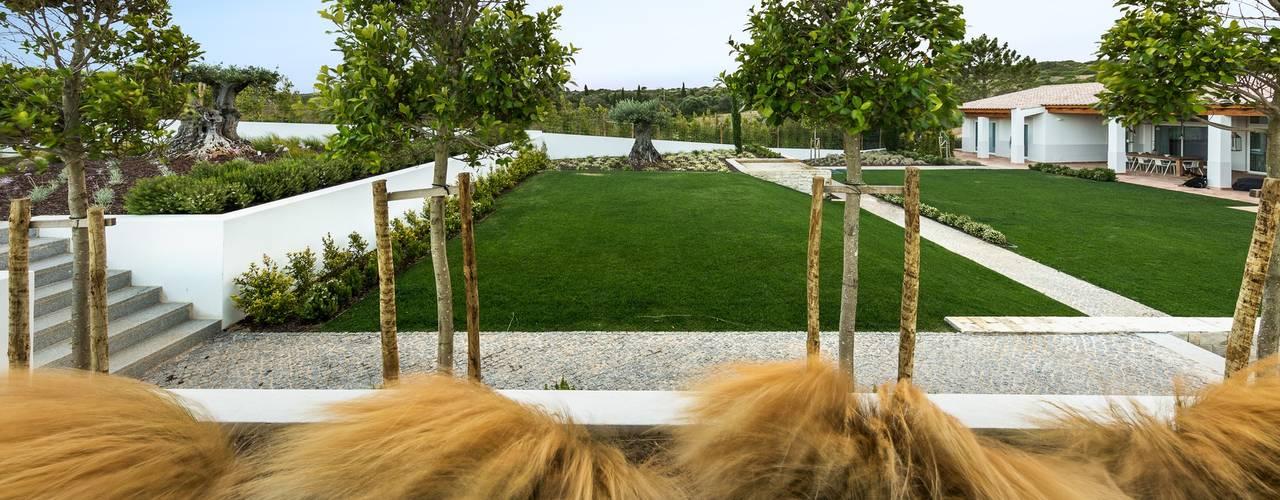 Mediterranean style garden by Jardíssimo Mediterranean
