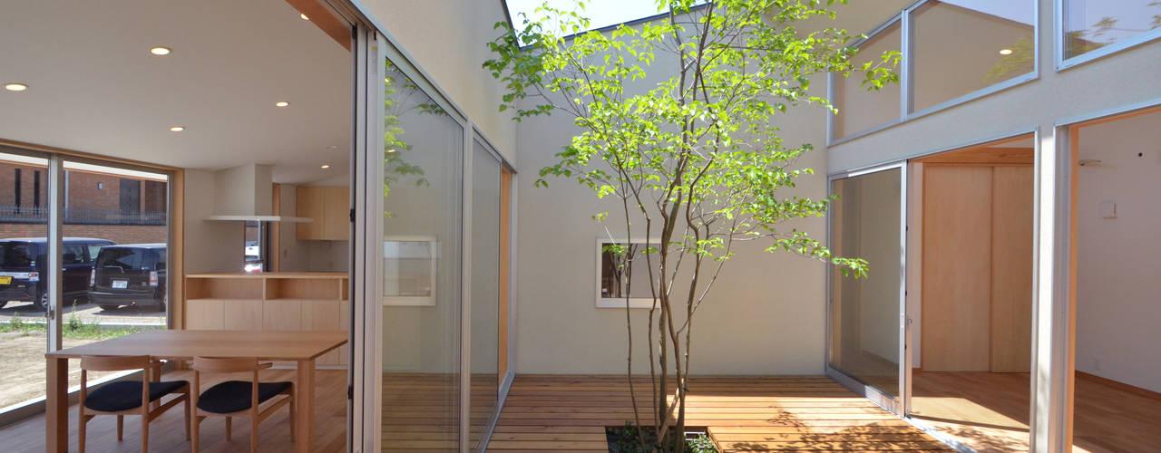 大きな中庭の家 TEKTON   テクトン建築設計事務所 オリジナルな 庭 木