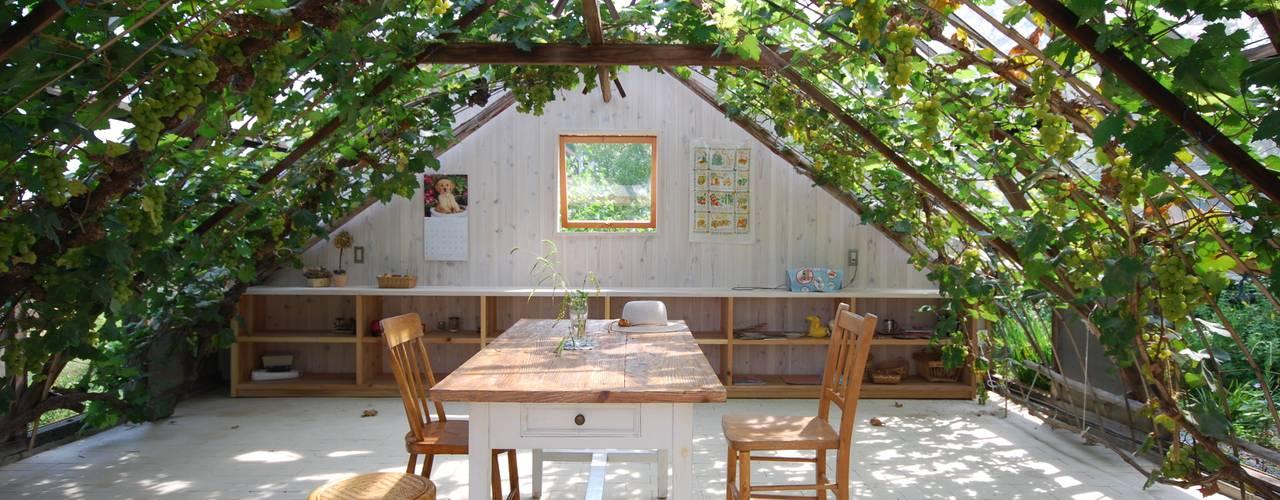 温室の再生 神家昭雄建築研究室 和風の 温室 木 緑