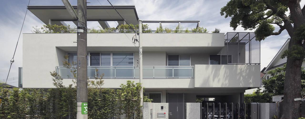 ミドセンチュリーテイスト 居間がテラスと一体化して繋がる成城の住まい モダンな 家 の JWA,Jun Watanabe & Associates モダン
