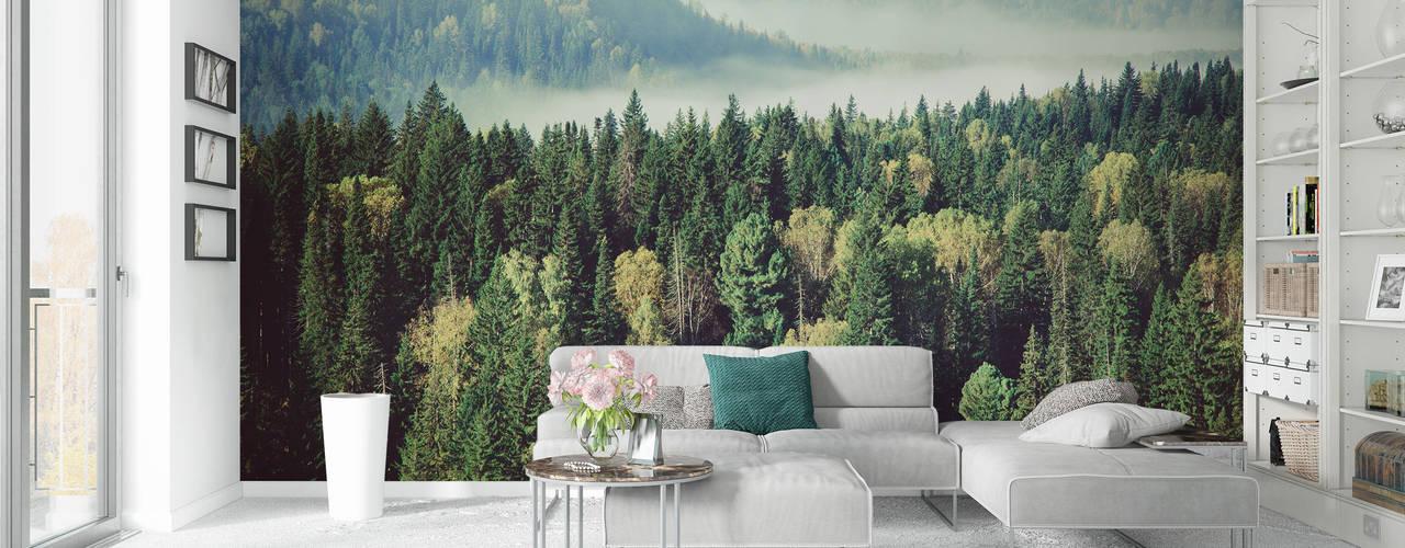 Fototapety REDRO: las na ścianie: styl , w kategorii  zaprojektowany przez REDRO,