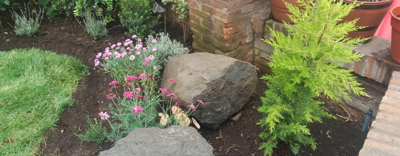 Jardin avant de style  par Deck and Garden