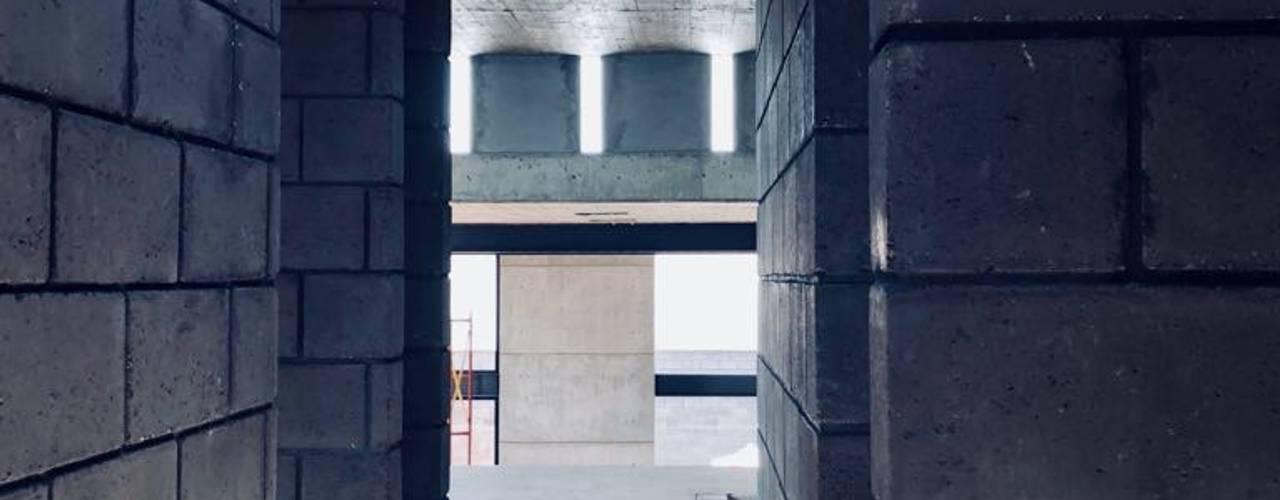 Paola Calzada Arquitectos Вбиральня Бетон Сірий