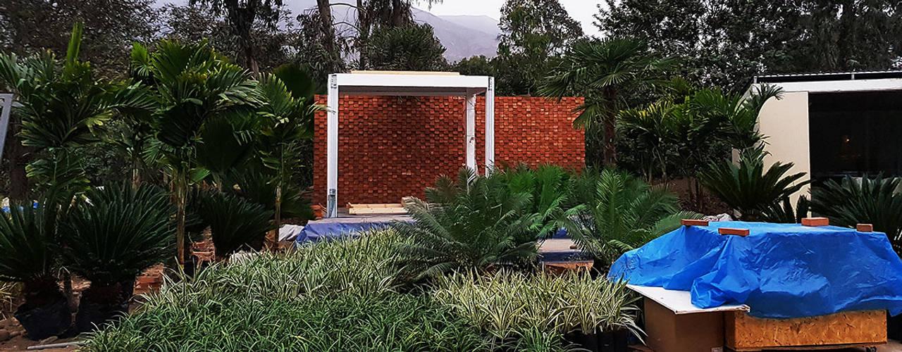 Tropical style garden by Marcia Lenz Paisajismo Tropical
