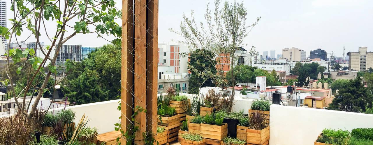Terrace by Boceto Arquitectos Paisajistas,