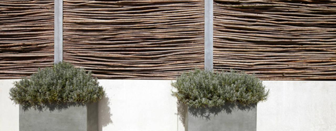 Hochwertige Freiraumgestaltung eines Einfamilienhauses CLAUDIA GROTEGUT ARCHITEKTUR + KONZEPT Moderner Garten
