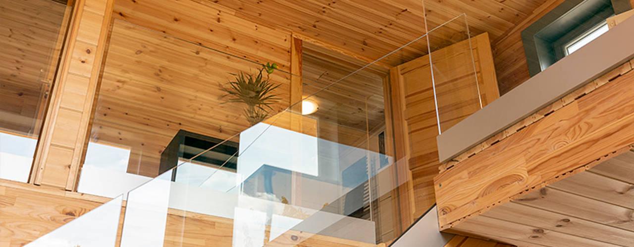 Holzhaus günstig bauen - das KUBU von Thule Blockhaus von THULE Blockhaus GmbH - Ihr Fertigbausatz für ein Holzhaus Ausgefallen