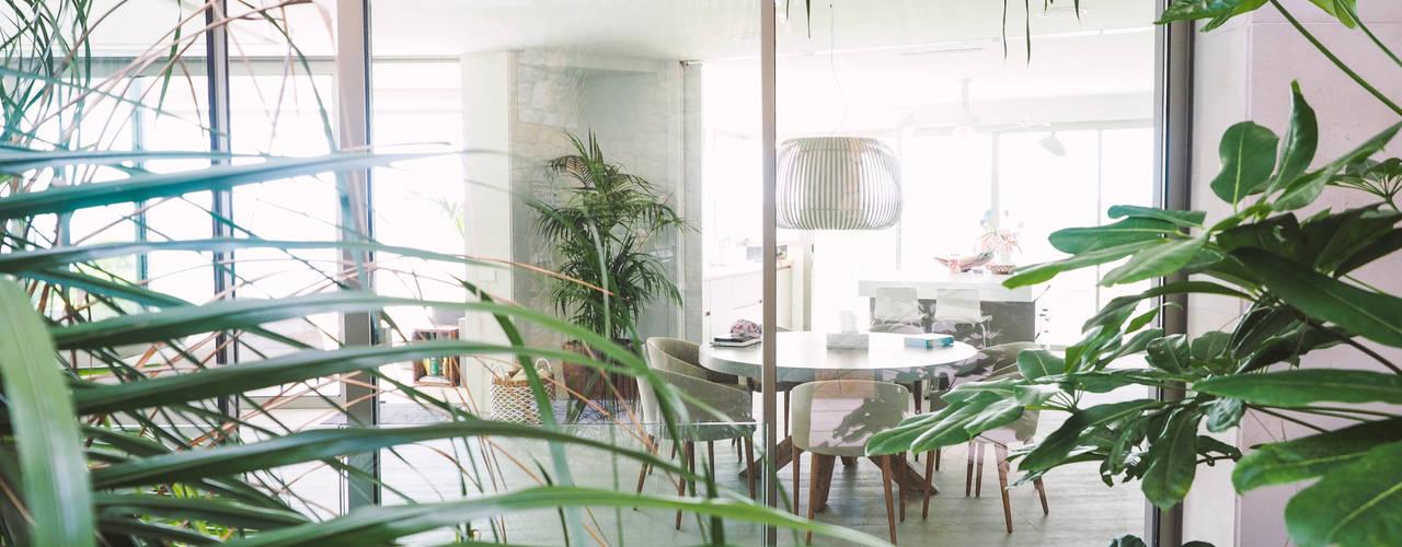 Vivienda unifamiliar aislada Fernando Ferrer Arquitectos Jardines de invierno de estilo tropical