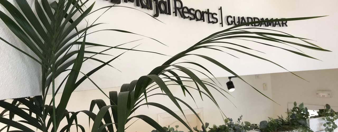 Rehabilitación y diseño de recepción de hotel - resort Hoteles de estilo mediterráneo de A interiorismo by Maria Andes Mediterráneo