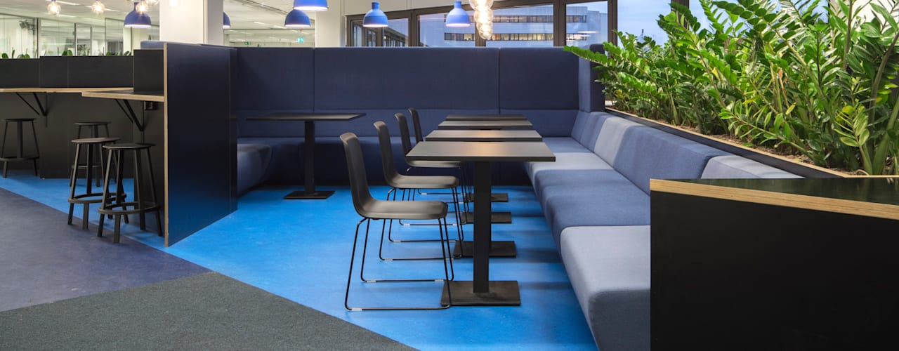 ÈMCÉ interior architecture Offices & stores Plywood Blue