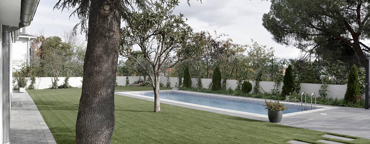 IMAGINEAN Moderner Garten Schiefer Grün
