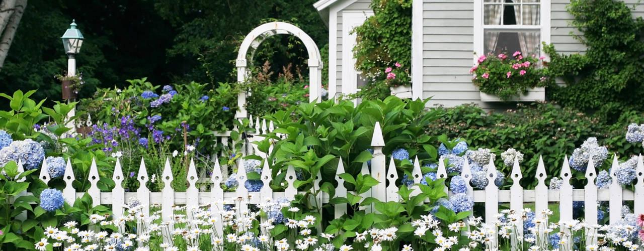 Gartengestaltung - Ideen & Beispiele zum Planen & Gestalten PuroVivo Vorgarten