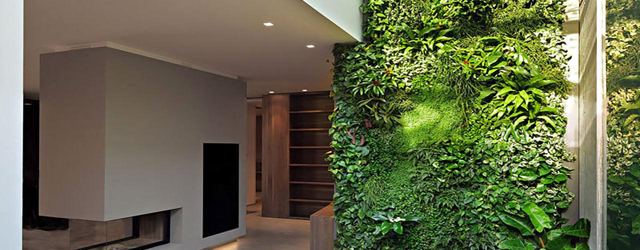 Architettura & Servizi 家居用品植物與配件