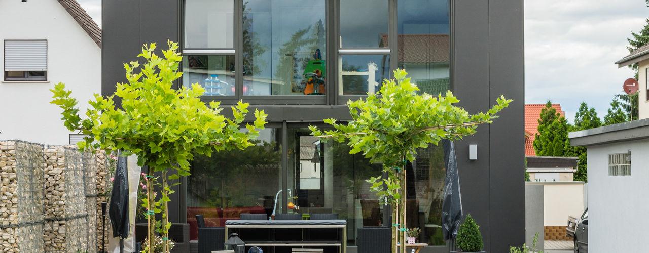 Box House - Single Family House in Lorsch, Germany Helwig Haus und Raum Planungs GmbH Сад в стиле модерн