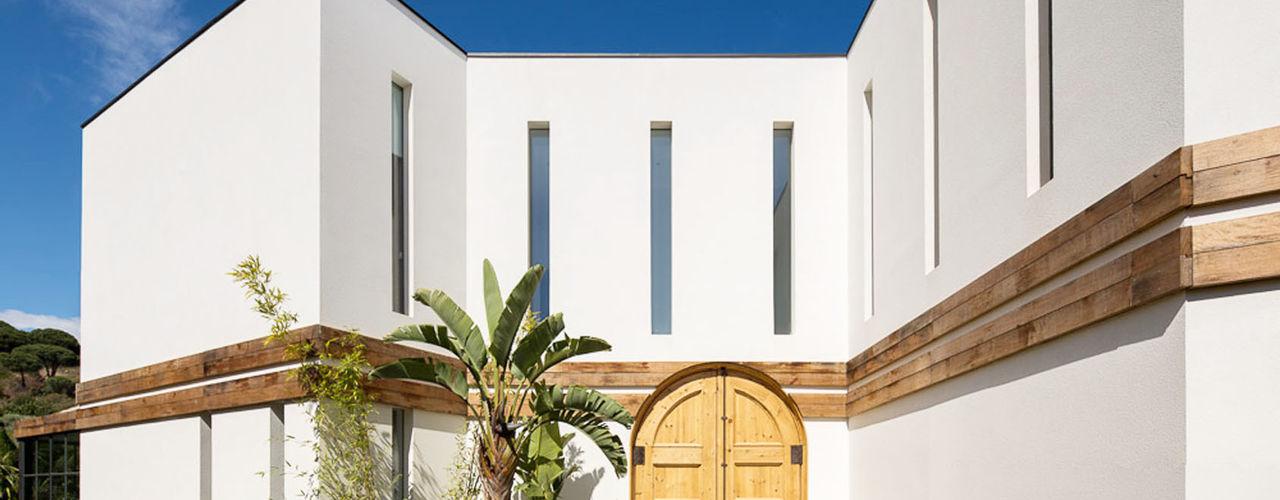 08023 Architects 窗戶