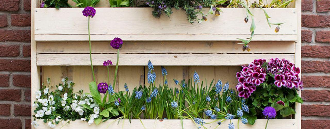 Pop up Pallets Balcones, porches y terrazasAccesorios y decoración