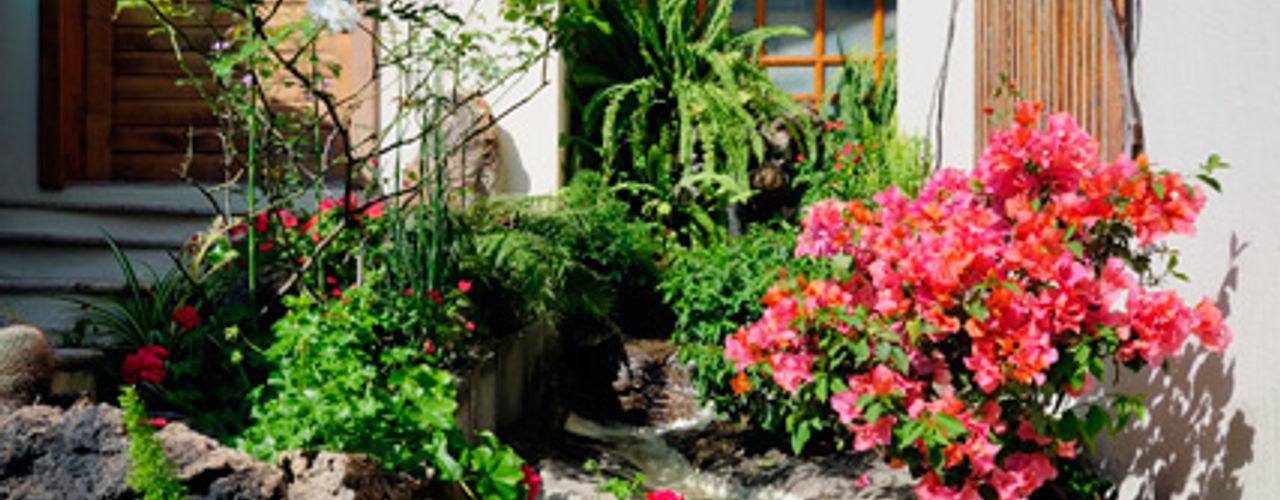 Excelencia en Diseño Asian style garden Engineered Wood White