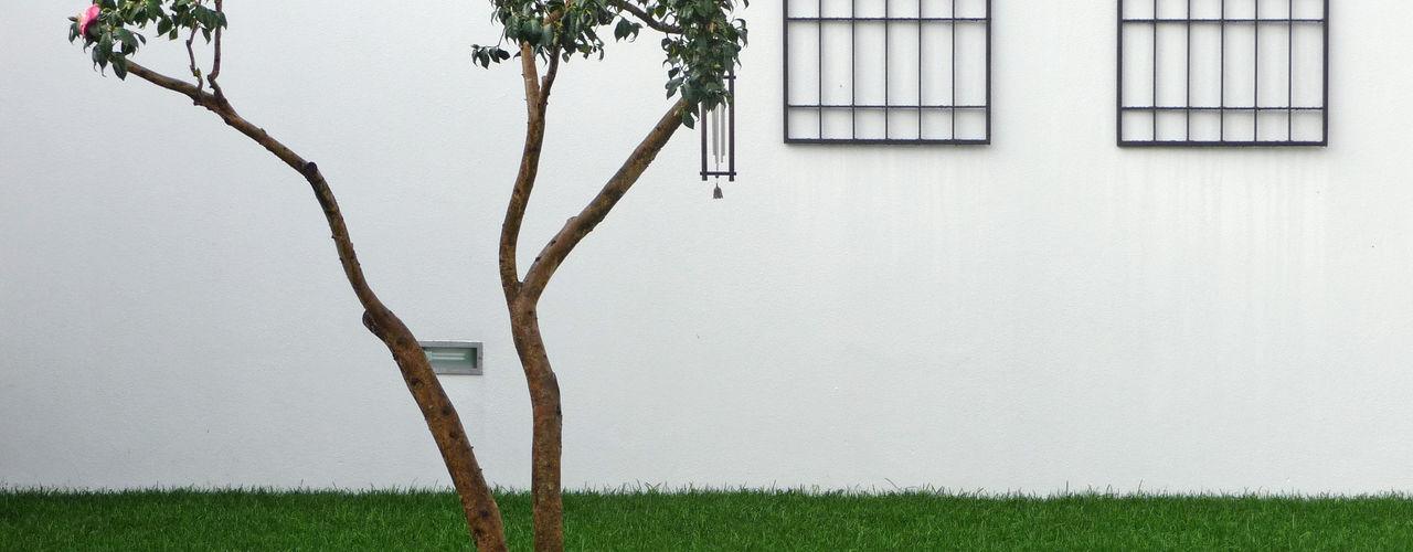 Sónia Cruz - Arquitectura Сад