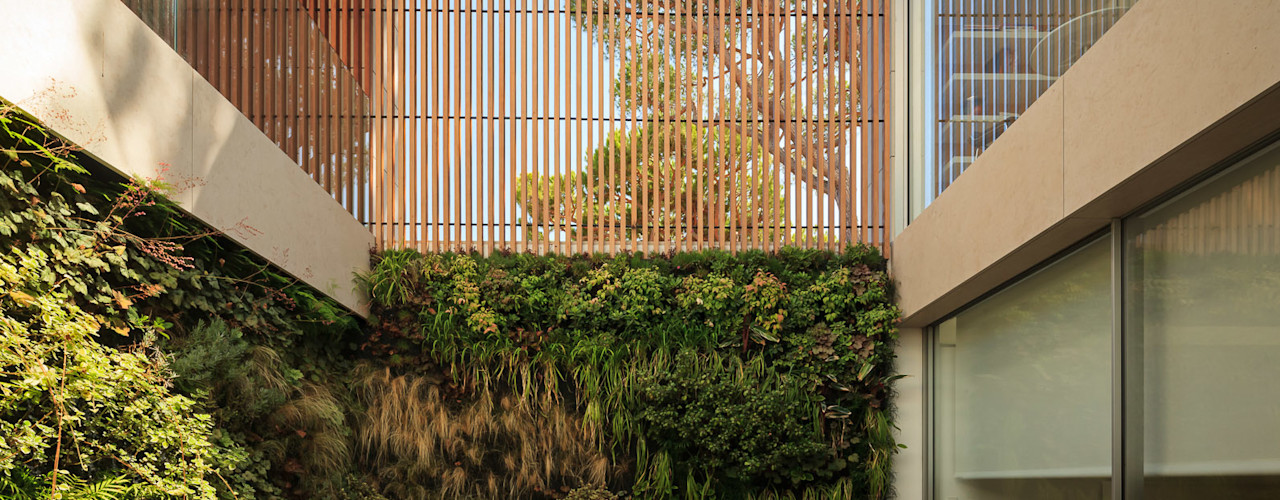 LC Vertical Gardens BahçeBitki & Çiçekler