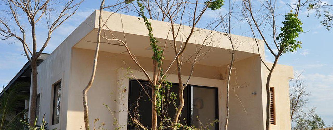 Degetau Arquitectura y Diseño Tropical style houses Natural Fibre Beige