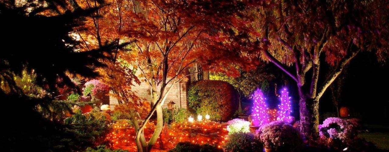 Jardines Nocturnos Akasha espacios iluminados Jardines clásicos