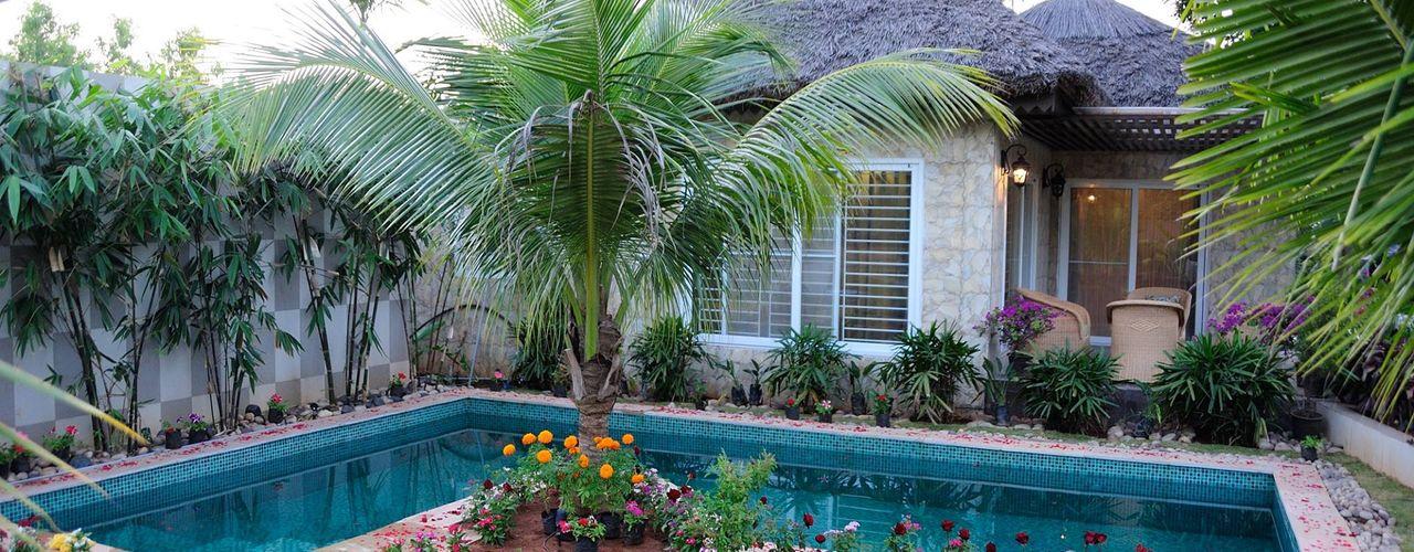 iammies Landscapes Mediterranean style garden